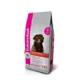 Eukanuba Labrador Retriever 12кг / Эукануба для собак породы Лабрадор-Ретривер 12кг